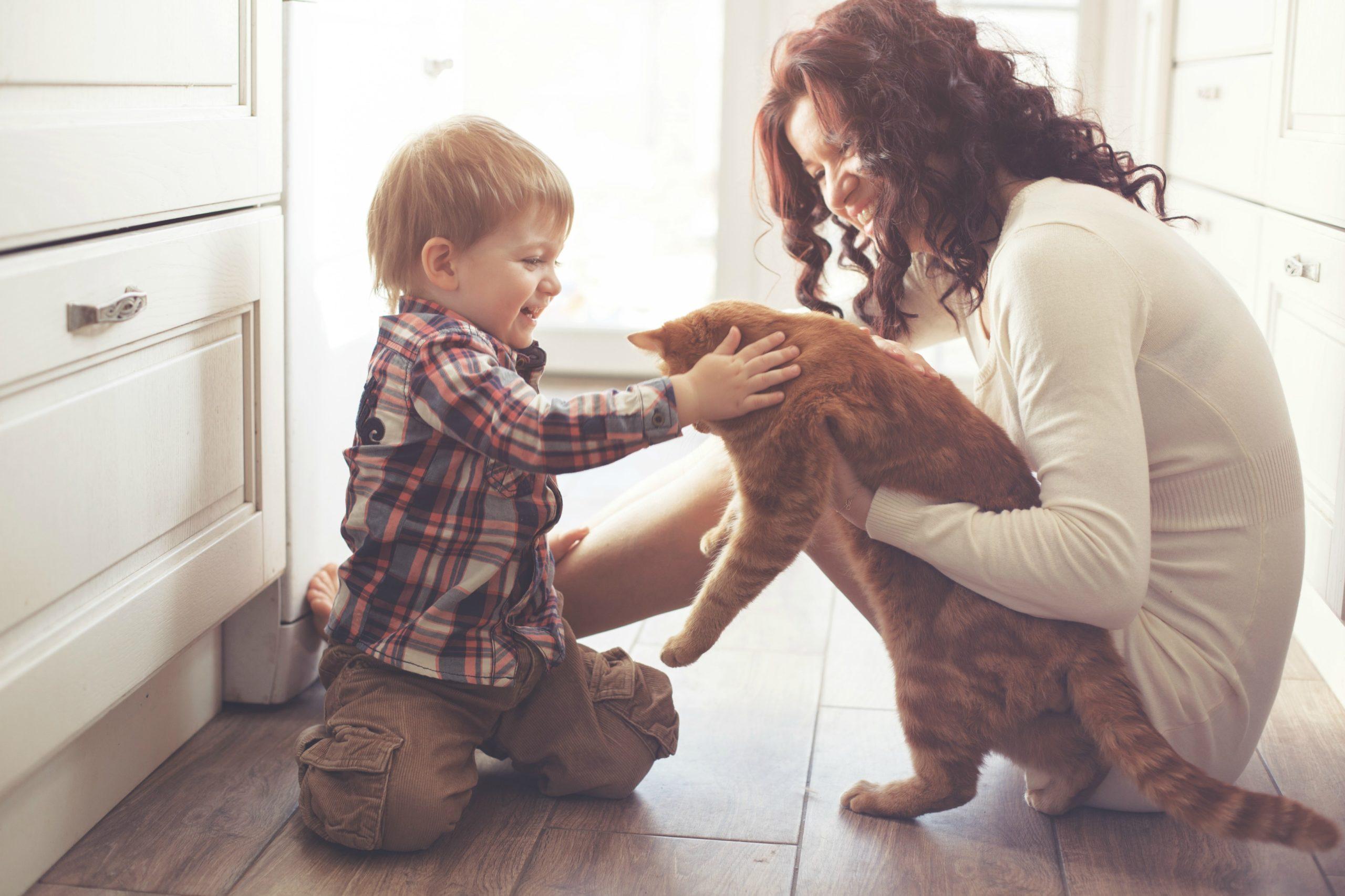 3 lưu ý chăm nuôi thú cưng khi nhà có trẻ