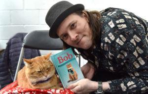 mèo Bob