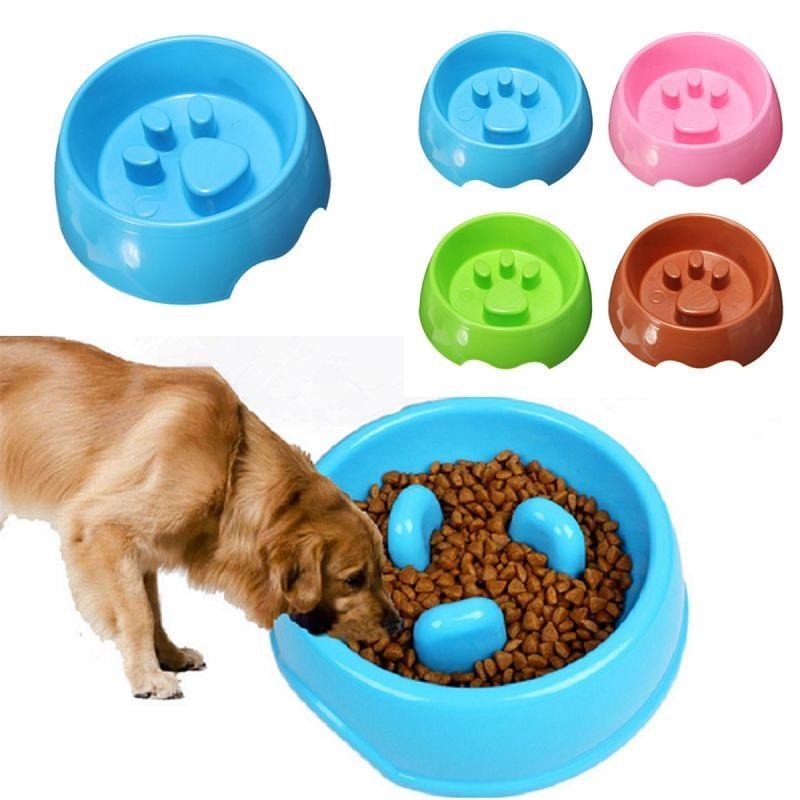 thức ăn cho chó