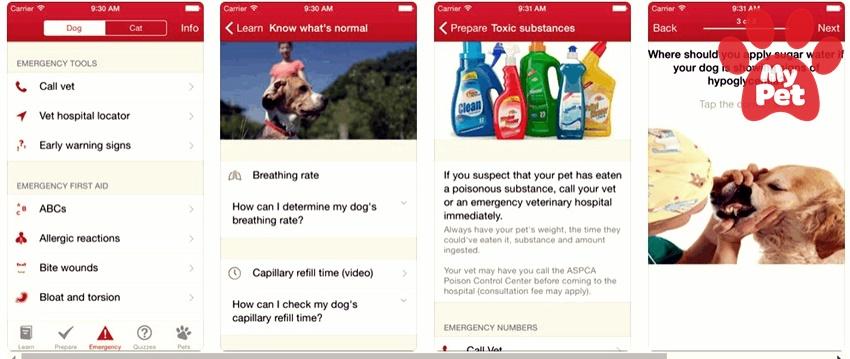 xu hướng ứng dụng thú cưng MyPet