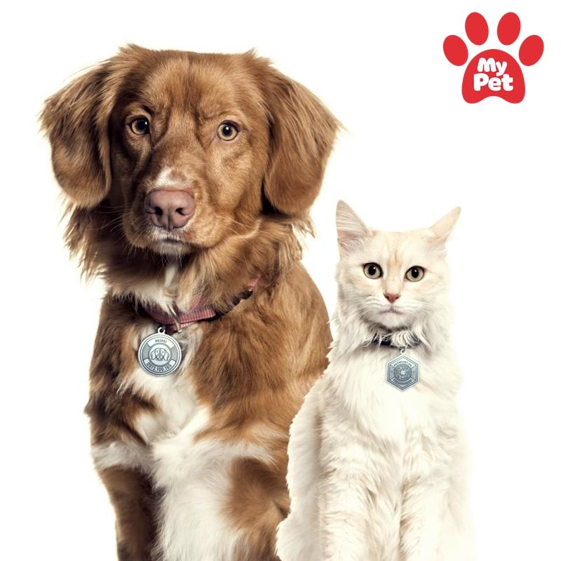 ứng dụng quản lý thú cưng