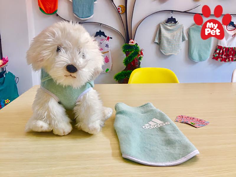 ứng dụng chăm sóc thú cưng