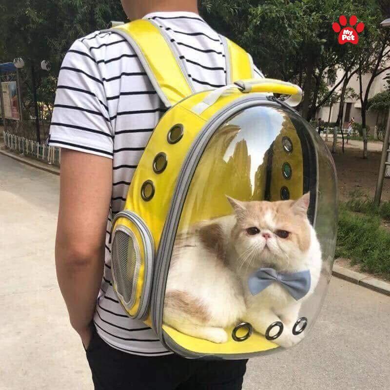 Balo vận chuyển thú cưng