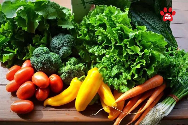 Trong rau xanh có nhiều vitamin và khoáng chất tốt cho sức khỏe