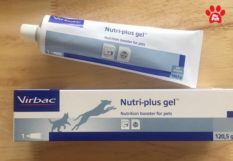 Nutri Plus Gel rất phổ biến trên thị trường