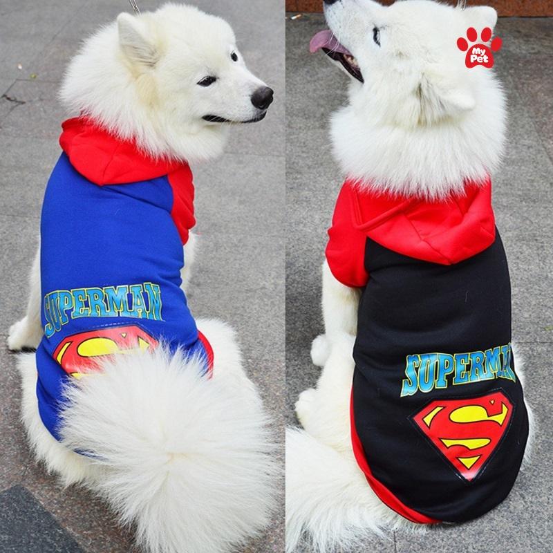 Những bộ quần áo khiến thú cưng trông nổi bật hơn